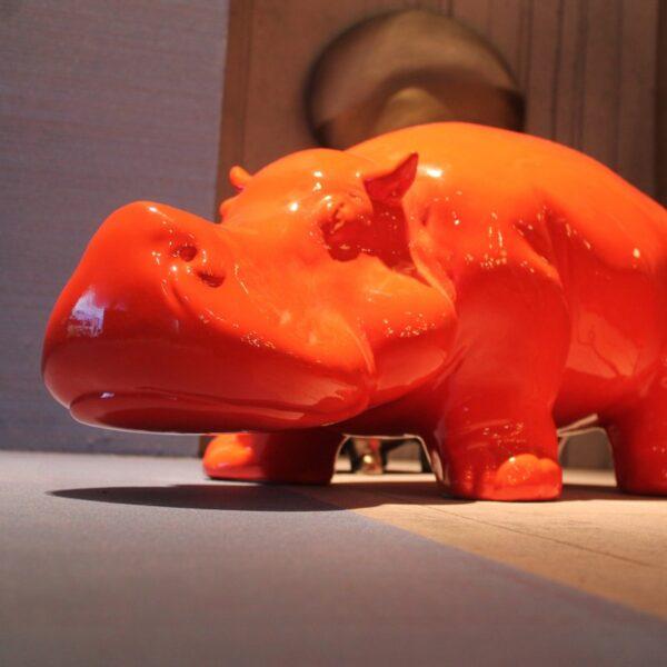hippo (12)