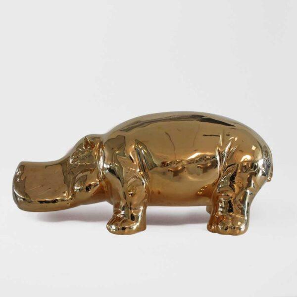 hippo (6)